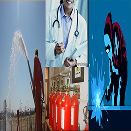 البيئة والسلامة والصحة المهنية